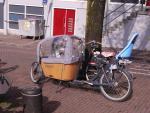 Jak widać, 4 osoby mogą spokojnie jechać na jednym specjalnym rowerze.