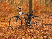 rower w jesieni